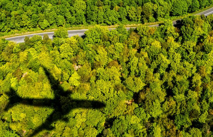 Airplane flying over treetops.