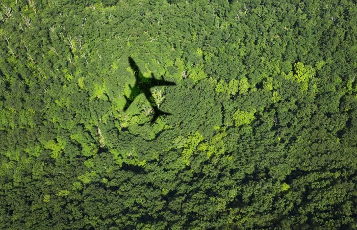 Airplane flying over a forest